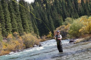 13996894 - fly fishing angler makes cast while standing in water
